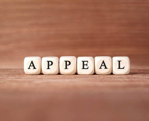 appeal case commentary